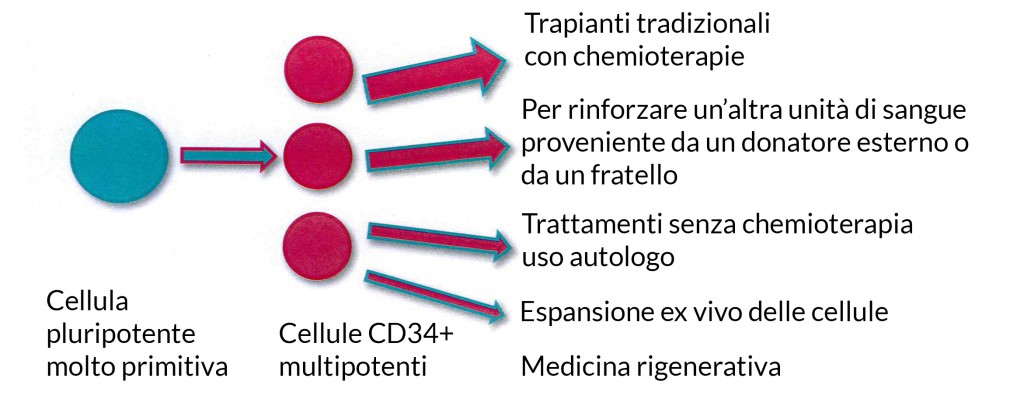 English Viable CD34 Value-1_testo